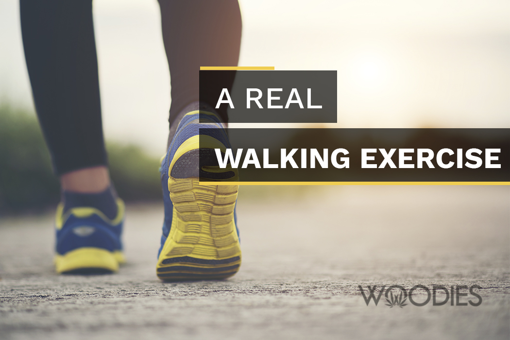 Transitioning From the Occasional Neighborhood Walks to A Real Walking Exercise